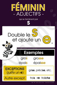 Féminin - Adjectifs en « s » French Verbs, French Grammar, French Teaching Resources, Teaching French, How To Speak French, Learn French, French Course, French Language Lessons, French Worksheets
