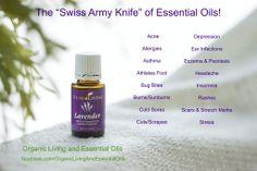 Organic Living and Essential Oils Like us on Facebook!  https://www.facebook.com/OrganicLivingAndEssentialOils  younglivingfamily@gmail.com