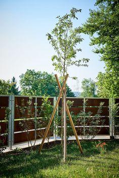 Sichtschutz Idee für Ihren Garten. Weitere Inspirationen finden Sie auf tulpenbaum.at Green Living Rooms, Gardening