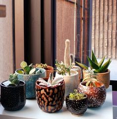 I love this mix of fabulously textured pots with succulents and cactus