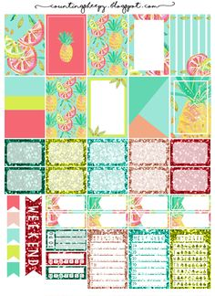 Free Printable Hot Summer Planner Stickers from Counting Sheepy