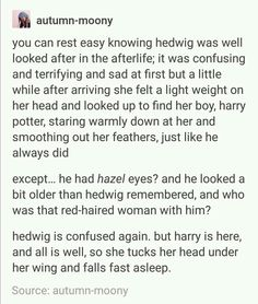 I did not need all these feels