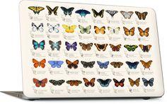 42 North American butterflies Laptop Skin Macbook Skin, Laptop Skin, Art Reproductions, Tech Accessories, Original Artwork, Custom Design, How To Apply, Butterfly, American