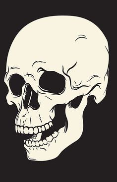 Skull Illustration by James P. Barry