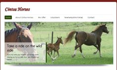 http://cintsahorses.co.za/    Cintsa Horses, incorporating New Hampshire Equine Rehab Centre