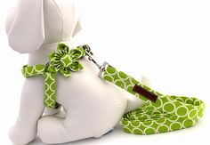 BOGO SALE StepIn Dog Harness Leash and Flower by BowWowCouture, $67.94 want!