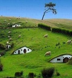 """Alumno: Facundo Álvarez. Autor: Desconocido. Elegí esta imagen, por dos razones: -Me encanta Nueva Zelanda, si tuviera que dejar mi país seria para ir ahí -El paisaje es perfecto, ahí están los llamados """"Hobbits"""""""