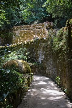 Our Sintra day trip and why this place is not madness but joy - gardens at Quinta da Regaleira, Sintra (Portugal) Great Places, Places To Go, Beautiful Places, Sintra Portugal, Fantasy World, Day Trip, Luxury Travel, Lisbon, Family Travel