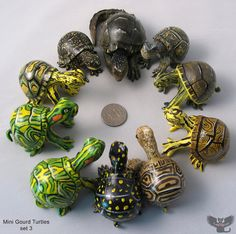 The Gourd Turtle Blog: Miniature Gourd Turtles