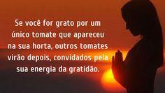 O Poder da Gratidão! |
