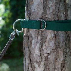 Tree Hugger Hammock Straps - perfect for dog zip line, too