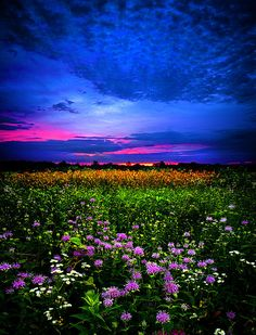 ~~Purples ~ sunset horizon, Wisconsin by Phil Koch~~