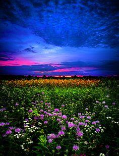~~Purples ~ sunset horizon, Wisconsin by Phil Koch~~