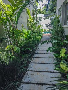Projeto de paisagismo residencial com jardim, piscina e deck em Madeira. Corredor lateral em placa cimentícia e jardim tropical. Small Tropical Gardens, Tropical Garden Design, Garden Landscape Design, Small Gardens, Side Garden, Garden Oasis, Back Gardens, Outdoor Gardens, Side Yard Landscaping
