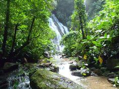 Eco Living Costa Rica: Private Villa in Costa Rican Rainforest Only $40 per Night!