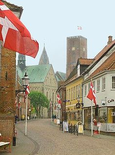 Established in the first decade of the 8th century[2] and first attested in a document dated 854 AD; Ribe is the oldest town in Denmark