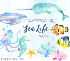 Sweet Sea Life Watercolor Pack by PaperSphinx on Creative Market