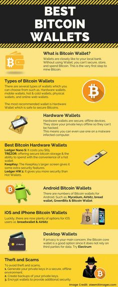 Before you put a dollar in bitcoin or any other cryptocurrency? Read More to know the Cryptocurrency wallet guide. - - Before you put a dollar in bitcoin or any other cryptocurrency? Read More to know the Cryptocurrency wallet guide. Investing In Cryptocurrency, Best Cryptocurrency, Blockchain Cryptocurrency, Cryptocurrency Trading, Bitcoin Cryptocurrency, Bitcoin Mining Software, Trading Quotes, Money Makeover, Local Banks