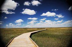 Badlands National Park - South Dakota, USA via BeersandBeans.com