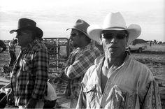 Cowboys at the Rawlinna Rodeo, Australia - Copyright Carla Coulson