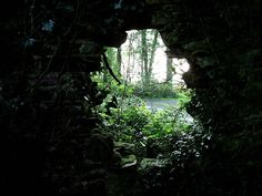 He had to duck to look through the roughly-hewn hole. He had never seen anything like it in this part of the wood.