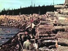 1950s Sawmill Workers Educational Documentary - Timber In The Northeast - CharlieDeanArchives	http://youtu.be/sMwMV_cxQAQ