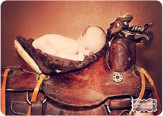 I own several saddles, western and english.. would love to do something like this with your newborn!