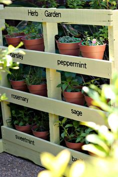 simple container ideas for the herb garden for a small price # Herb Garden Palette Easy … - Diy Garden Projects Vertical Herb Gardens, Vertical Garden Diy, Small Gardens, Potted Herb Gardens, Steep Gardens, Narrow Garden, Vertical Planter, Veggie Gardens, Herb Garden Pallet