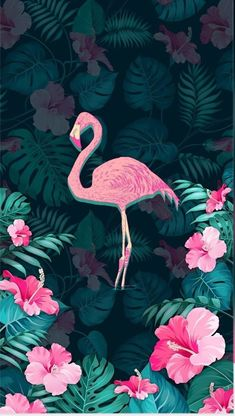 44 New Ideas Wall Paper Phone Art Photography Et Wallpaper, Flamingo Wallpaper, Flamingo Art, Screen Wallpaper, Wallpaper Backgrounds, Phone Backgrounds, Cute Wallpapers, Phone Wallpapers, Wall Paper Phone