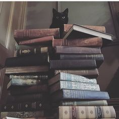 """** """"Me fort of literature. Entry forbiddens."""""""