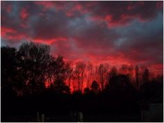 Alicia Sims of Leesburg shared this gorgeous sunset with us!