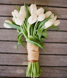 """211 curtidas, 2 comentários - Noivinhas de Luxo® (@noivinhasdeluxo) no Instagram: """"Bom dia!! Um lindo bouquet de tulipas para perfumar a vida!  #bomdia #bouquetdodiandl #buque…"""""""