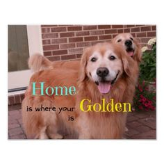 Golden Retriever Home Quote Print by #AugieDoggyStore