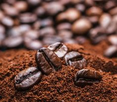 Helena, the tiny South Atlantic island's green-tipped Bourbon Arabica coffee plant produces some of the world's most expensive beans. Best Coffee Grinder, Coffee Plant, Coffee Photography, Brewing Tea, Coffee Drinks, Drinking Coffee, Morning Coffee, Home Remedies, Waffle