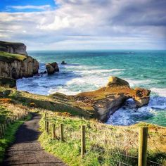 Tunnel Beach in Dunedin, such a beautiful spot! At the bottom a century ago a wealthy family tunneled through the rock to get to their own private beach. Not that anyone sane would swim here. Discovered by YoungAdventuress at Tunnel Beach, Dunedin, New Zealand