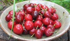 Can eating cherries banish your jelly belly?