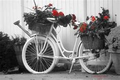 bicycle with flower basket - lean it up against a tree.