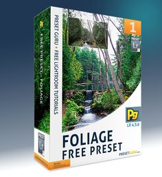 Free Lightroom Preset: Foliage