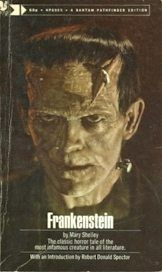 Critical analysis on the Mary Shelley's novel Frankenstein sorrow - Essay Example