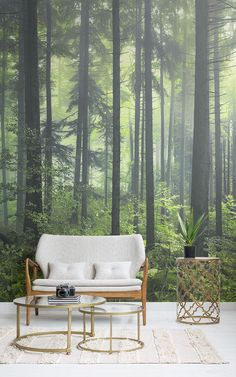 Our Mysterious Spring Forest Wallpaper Mural is a lush haven of beautiful green foliage and trees that fill the wilderness with life. The deep perspective delves down into the edge of the spring forest, giving you a continuous view through the landscape. Forest Wallpaper, Tree Wallpaper, Accent Walls In Living Room, New Living Room, Nature Verte, Forest Mural, Spring Forest, Small Space Living, Green Trees
