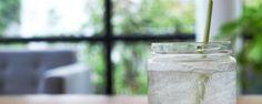 Receita de água aromatizada com capim cidreira