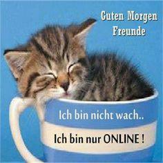schönen guten morgen wünsche ich euch - http://guten-morgen-bilder.de/bilder/schoenen-guten-morgen-wuensche-ich-euch-29/