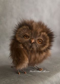 Red Owl ~ Well, how cute is this!?!
