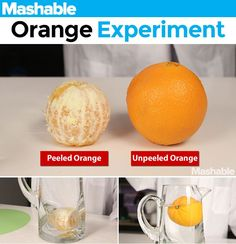Learn 5 scientific principles using common household items.