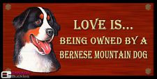 ;-) Bernese Mountain, Mountain Dogs, Dog Pictures, Animal Pictures, Dog Love, Puppy Love, Bernese Dog, Daisy Dog, Animation