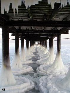 frozen under the boardwalk