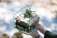UO DIY: Terrariums - Read More
