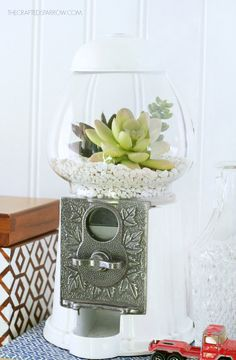 Gumball Machine Succulent Planter Sooo cute!!!❤️