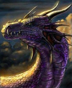 Dragon highlighted