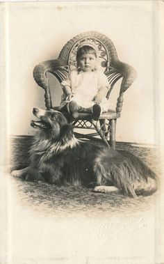 Baby Girl in Chair with Collie Dog on Floor Real Photo Postcard RPPC AZO | eBay